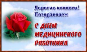 102042833_day_medrabotnik_big