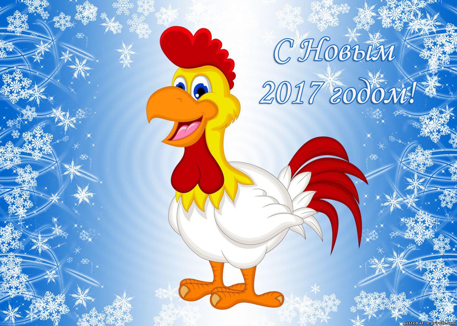 Красивые петушки к новому году