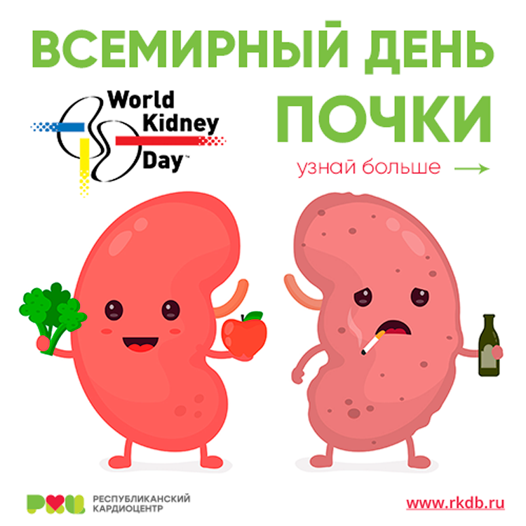 Ежегодно во второй четверг марта во всем мире отмечается Всемирный день борьбы с заболеваниями почек. 